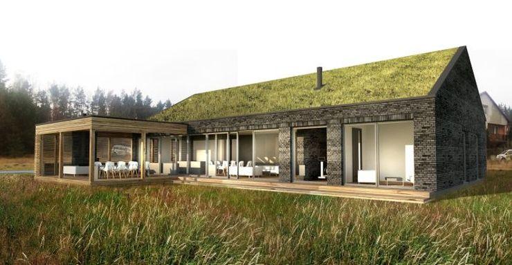 Nowoczesny Projekt Domu W Stylu Skandynawskim Idea Domu